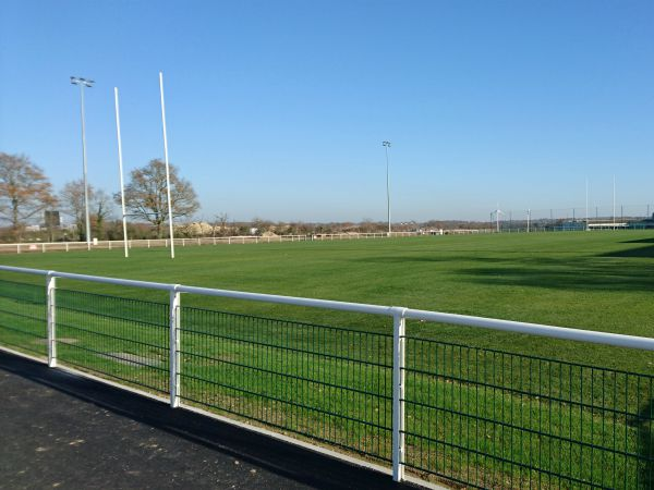 Terrain de rugby en gazon traditionnel - Sportingsols